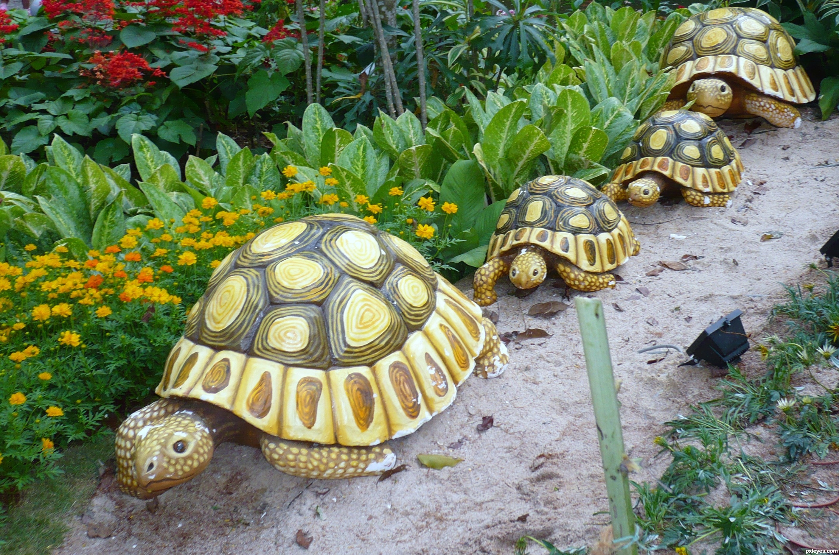 Tortoise figure picture by leebaoren for garden for Small garden decoration