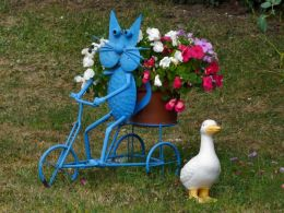 The blue cat on his tricycle narrowly avoids a duck that crossed without looking