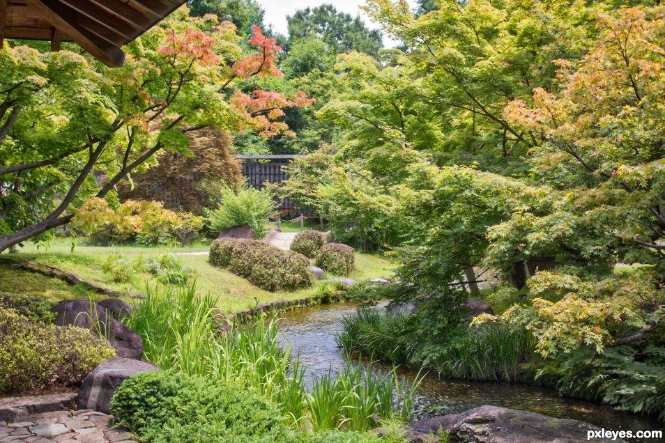 A stream runs through the garden