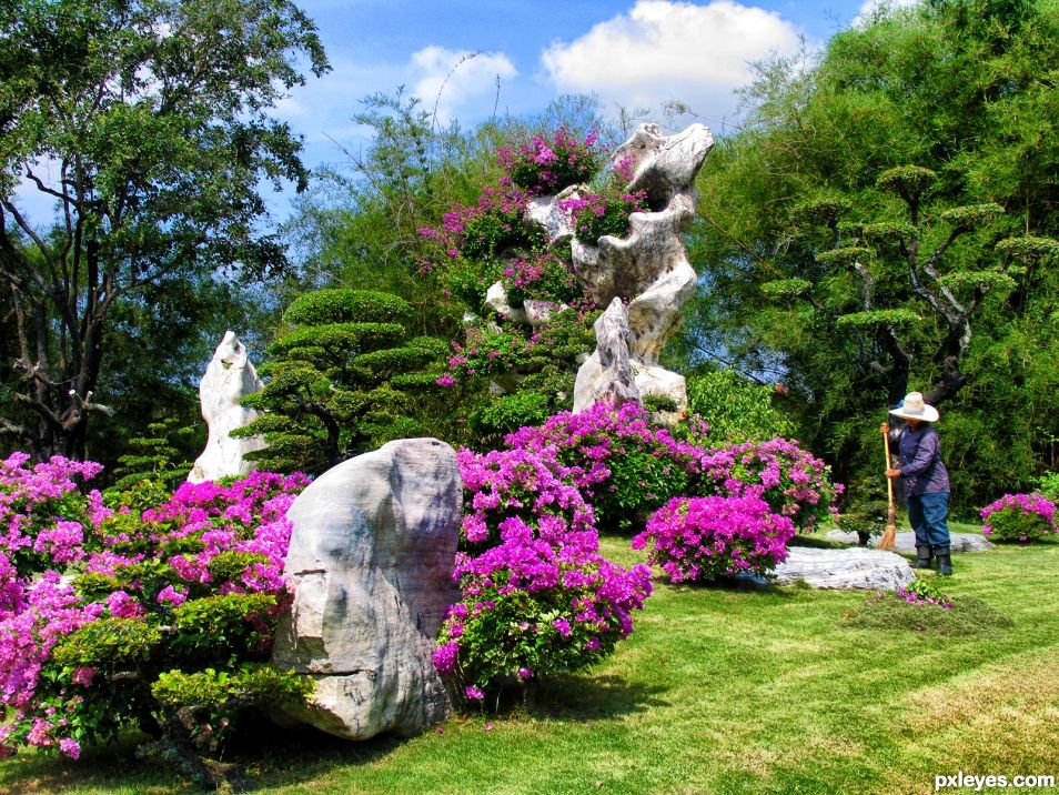 Tropical Stone Garden