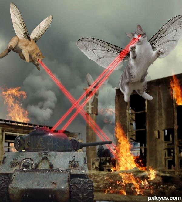 GIANT KITTYFLIES ATTACK!