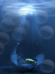 Into deep blue sea Picture