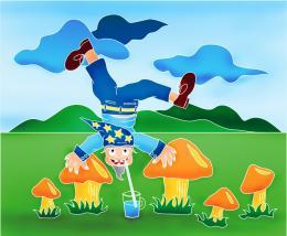 gnomes & mushroom