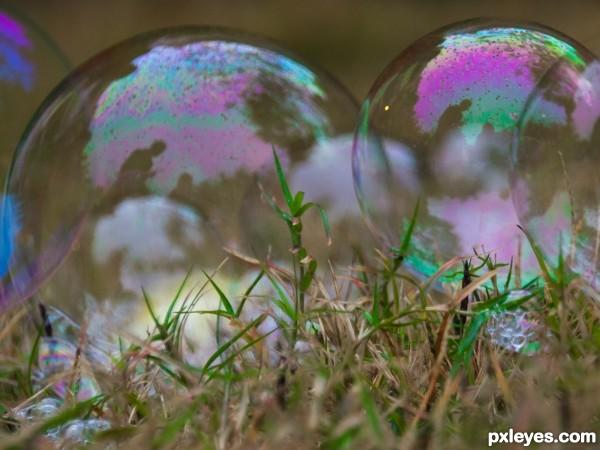 Bubbles Low