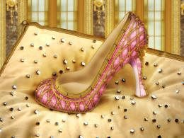 A shoe for a princess Picture