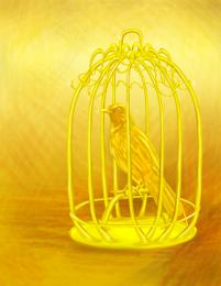 Golden bird in the cage