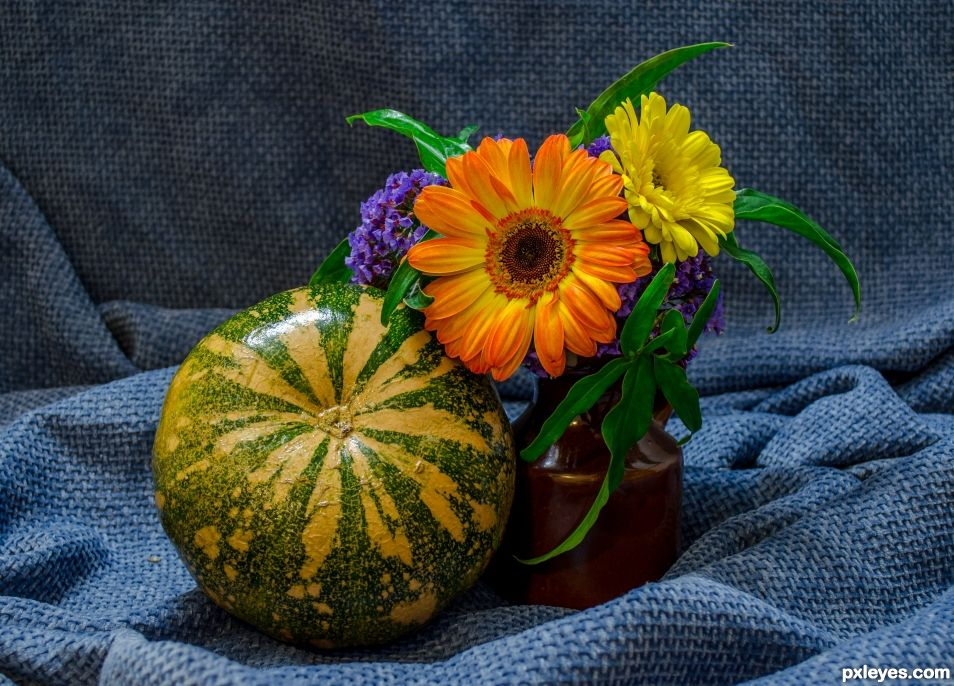Pumpkin and flowers