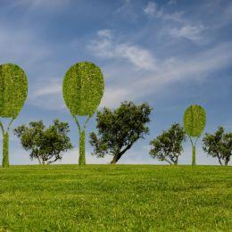 Tennistree