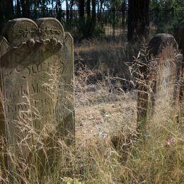 Overgrowngravestones