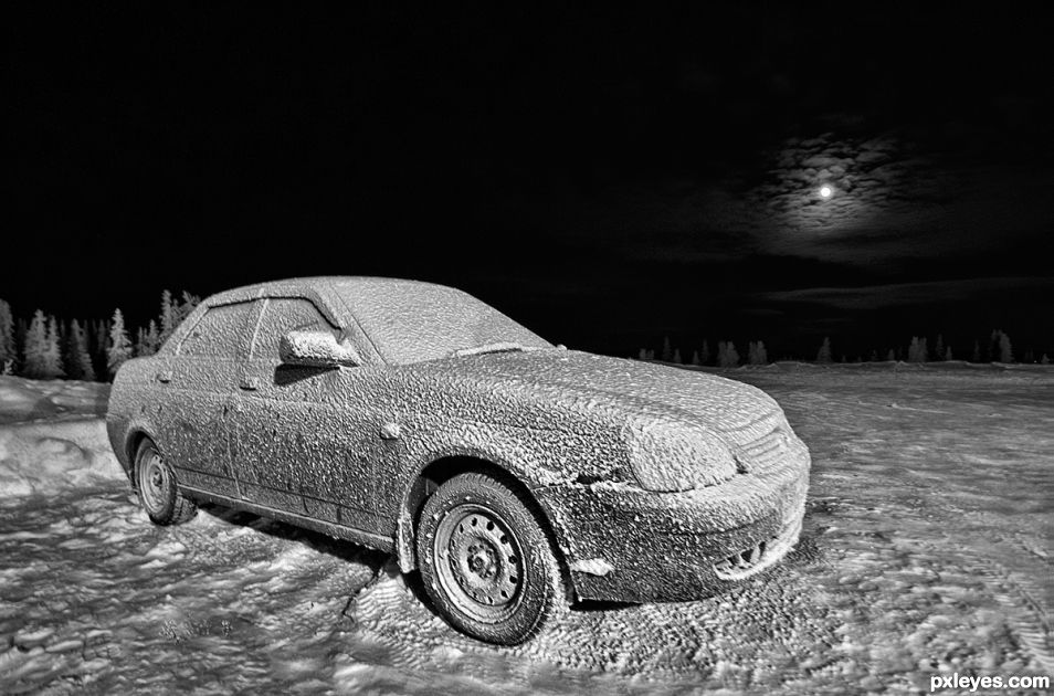 Frosted Lada