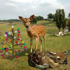 deer with magical tree
