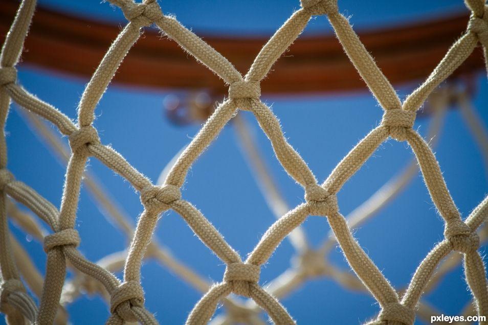 Half Court Half Net
