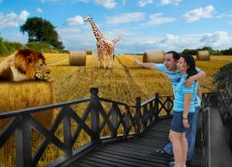 outdoorzoosafari