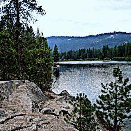 LakeintheForrest