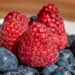 raspberriesandblueberries