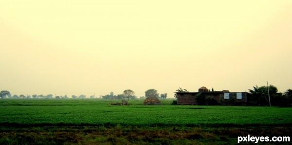 Driveway Horizon