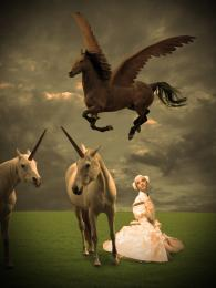Pegasus, unicorns and a maiden