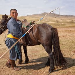 Horseman of Outer Mongolia Picture