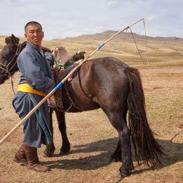 HorsemanofOuterMongolia