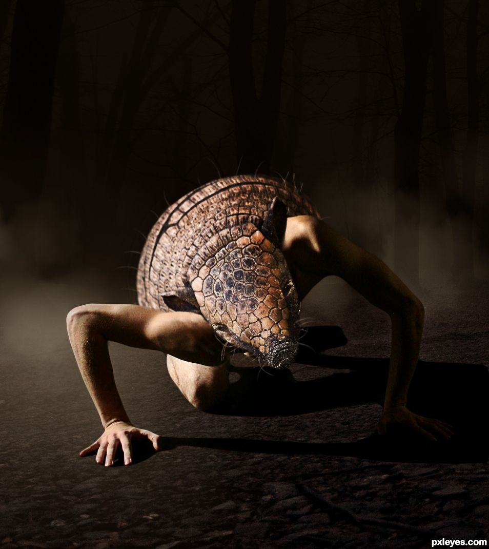 At Night, the Armadillo Man Comes Out.