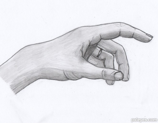 Gallery For gt Human Hand Sketch