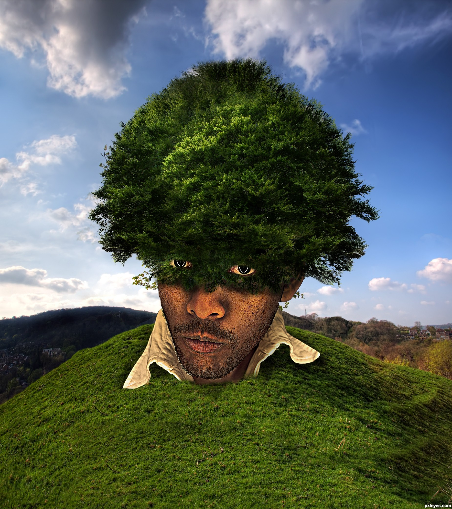 The Big Tree picture, by lolu for: i was a tree photoshop contest ...