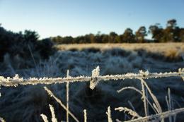 cold moring at Lancefield