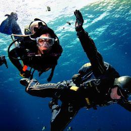 Dive Picture