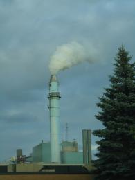 Energy Plant Picture