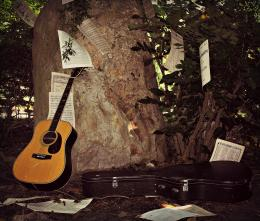 TheMusicintheTrees