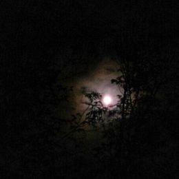 Mooninclouds