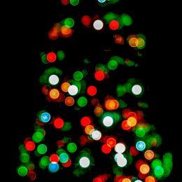 Christmastreeonthewayout