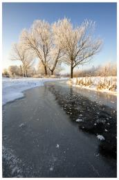 FrozenCreek