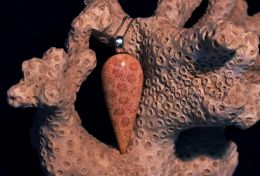 Indonesian Agatized Coral Pendant