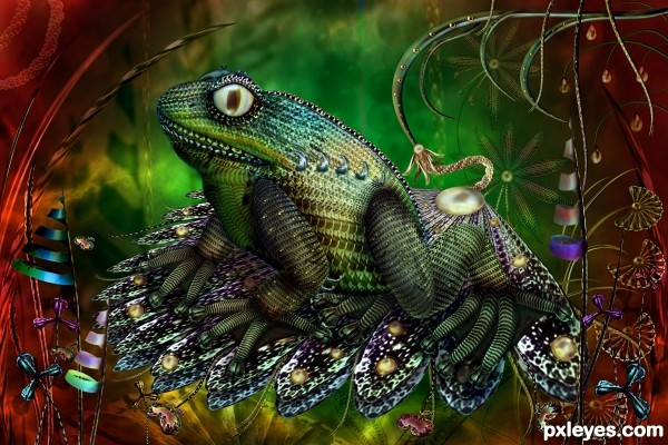 Froggy photoshop picture