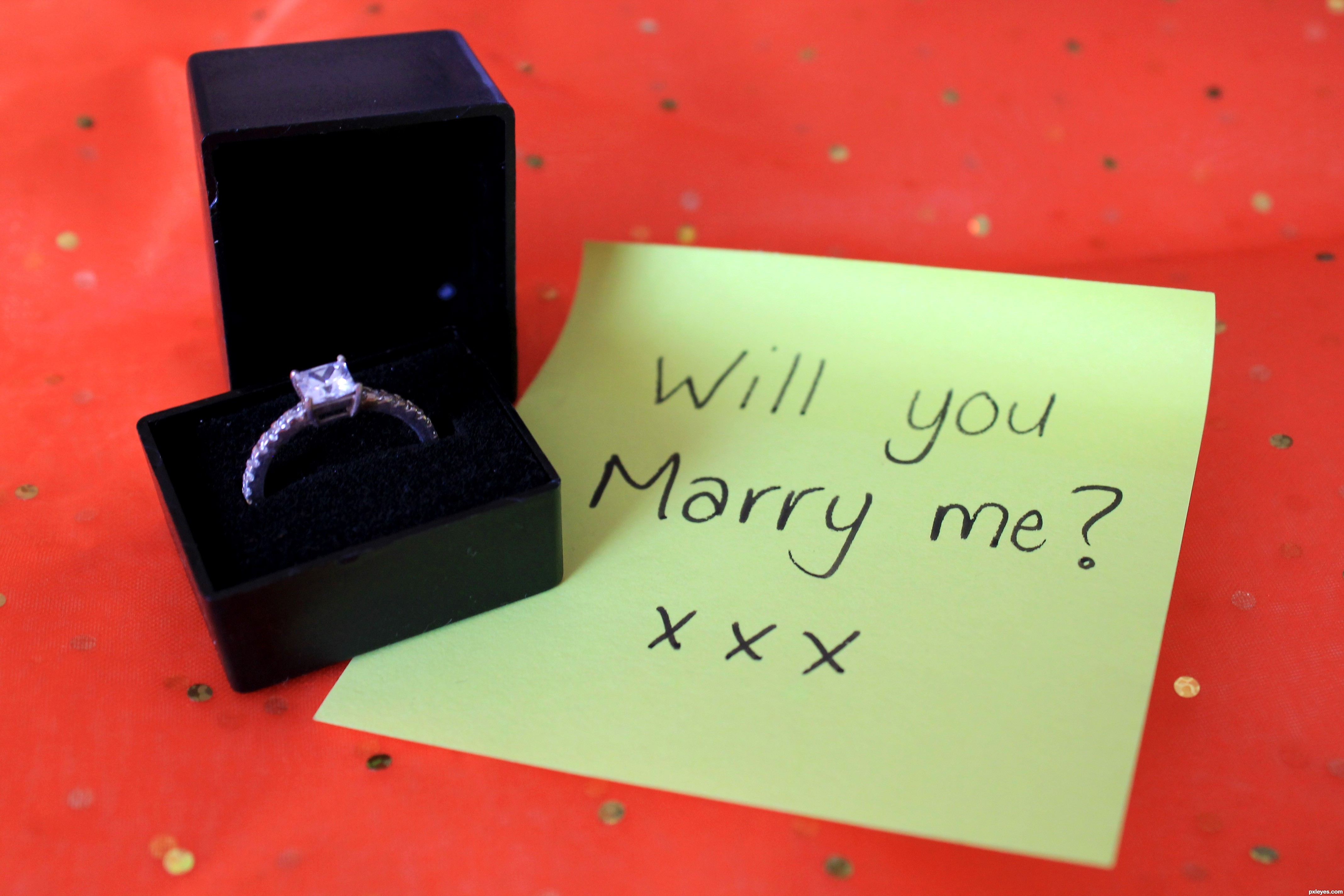 Marry Me? picture, by loriann88 for: jewelry with a twist ...