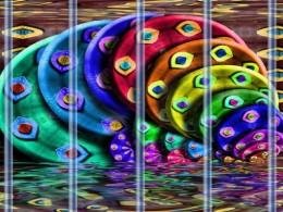 ColorDisksinPrison
