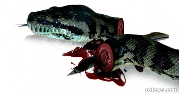 inside python