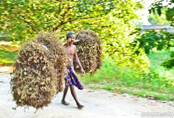 Farmer with crops