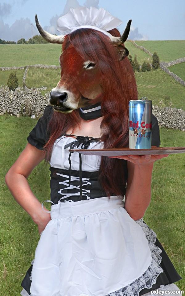 Energy! No Bull
