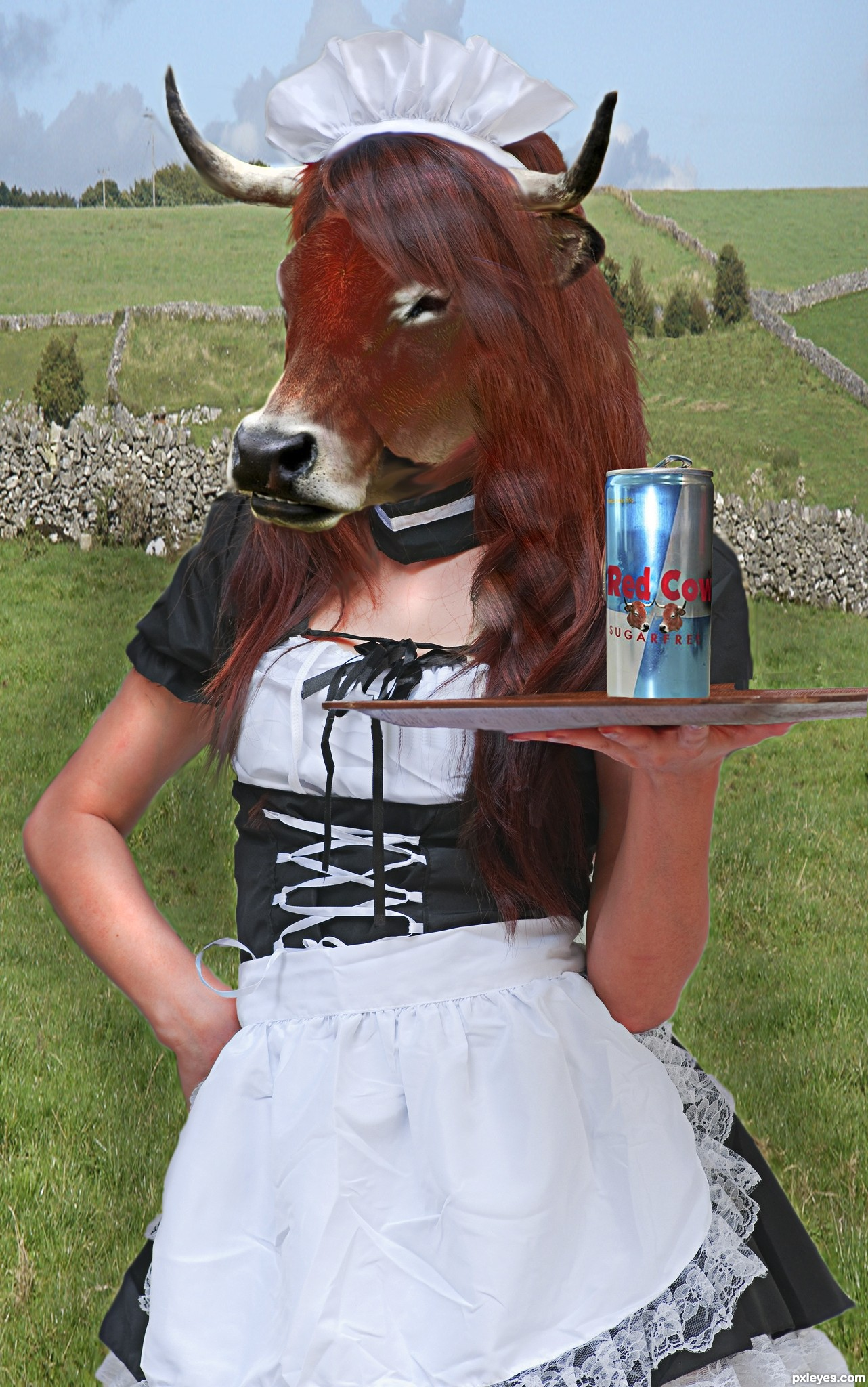 Labeled Cow Photoshop Contest  20317   Pictures Page 1