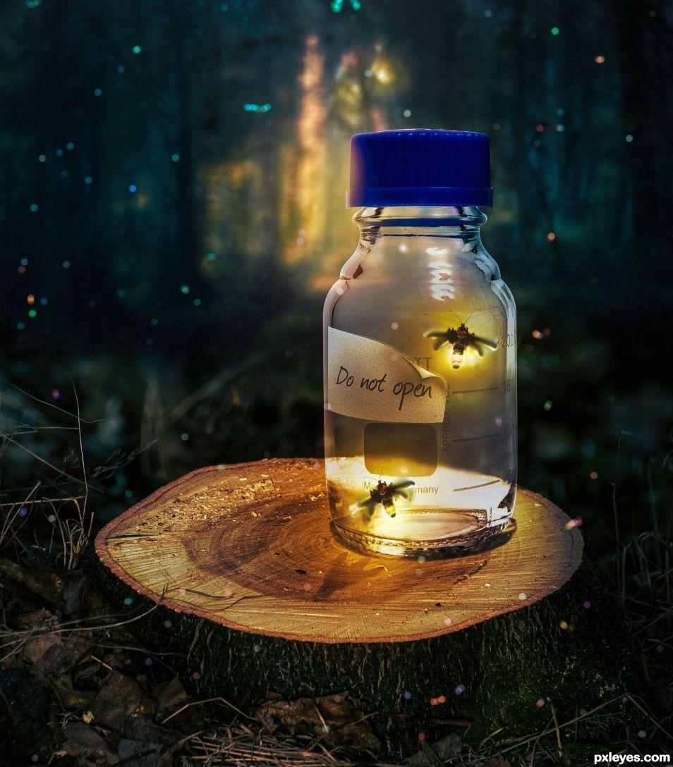 Firefly dream