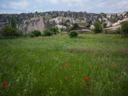 Gomedë valley