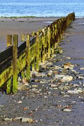BeachGroyne