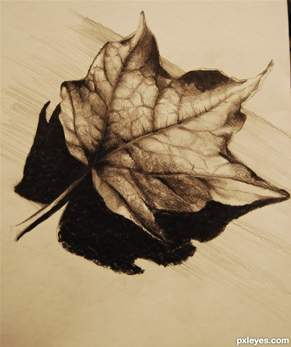 Creation of lone leaf...: Final Result