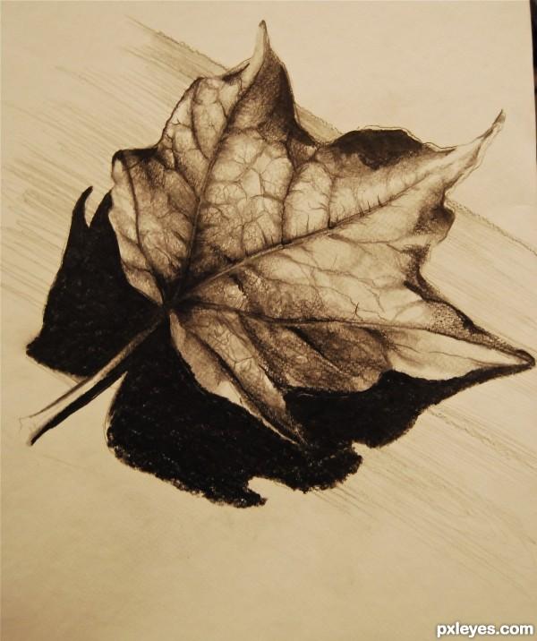 lone leaf...