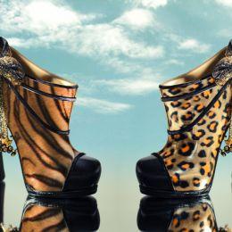 Wildshoes