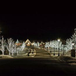 WinterNight