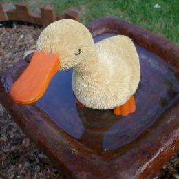 DuckBath