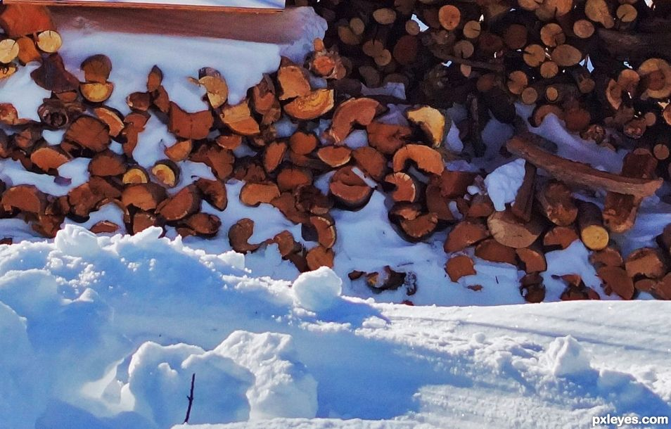Frozen firewood